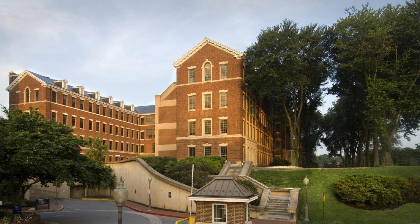 School of Medicine Building amidst the backdrop of trees and blue skies