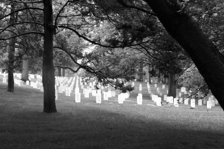 Arlington Cemetery, by William Dishong, M10