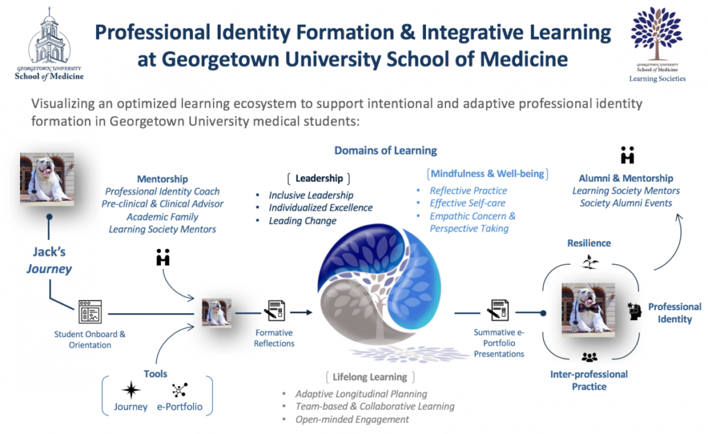Professional identity formation and integrative learning flowchart