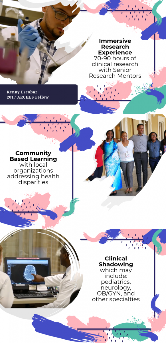 Immersive Research Experience 70-90 hours of clinical research with Senior ResearchMentors Community Based Learning with local organizations addressing health disparities Clinical Shadowing which may include: pediatrics, neurology, OB/GYN, and other specialties