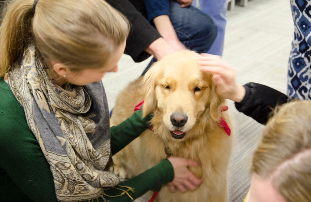 """Me in Medicine"" event, People.Animals.Love Pet Therapy Visit"